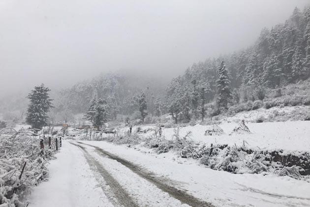 وادی کشمیر کے میدانی علاقوں بشمول گرمائی دارالحکومت سری نگر میں جمعہ کو رواں موسم سرما کی پہلی بھاری برف باری ہوئی جس کے نتیجے میں زمینی و فضائی رابطوں کے ساتھ ساتھ بجلی کا نظام بھی بری طرح سے متاثر ہوگیا ہے ۔ بھاری برف باری سے نظام زندگی درہم برہم ہوکر رہ گئی ہے۔