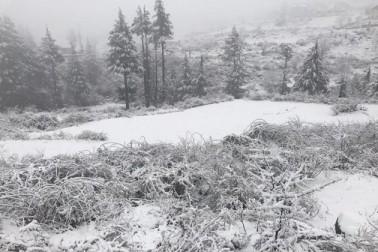 اہلیان وادی جب جمعہ کی صبح نیند سے اٹھے تو شدید برف باری کا سلسلہ پہلے ہی شروع ہوچکا تھا اور کچھ ہی منٹوں بعد تمام کھلے میدانوں اور مکانوں و دیگر عمارتوں کی چھتوں نے برف کی سفید چادر اوڑھ لی۔
