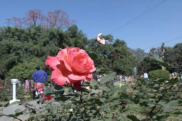 ان نظاروں کو دیکھ کر عوام کو بیحد خوشی کا احساس ہوتا ہے۔ 65 مزدور ان باغوں کی خوبصورتی برقرار رکھنے میں کڑی مشقت کرتے ہیں ۔