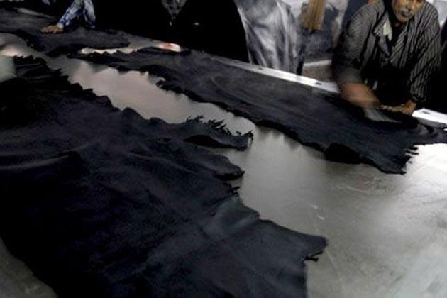 ریاست میں جس طرح سے سلاٹر ہاوسوں پرکارروائی کی جا رہی ہے، اس سے چمڑا کاروبارگوشت کھالیں نہ ملنے کی وجہ سے مکمل طور پر بربادی کے دہانے پر پہنچ چکا ہے۔
