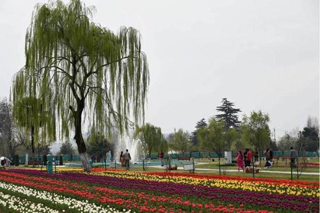 اس باغ میں داخل ہونے کے لئے بالغان کے لئے 50روپے اور بچوں کے لئے 20روپے فیس مقرر ہے۔ یہ باغ سیاحوں کی سیر وتفریح کے لئے قریب ایک ماہ تک کھلا رہے گا۔