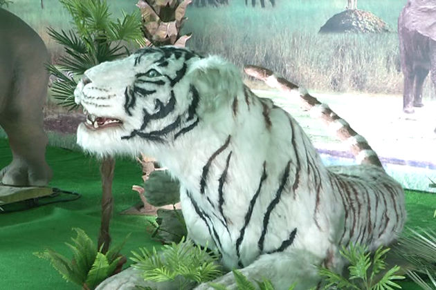 روبوٹ ٹیکنالوجی کے استعمال سے تیار کیے گئے یہ جانوراصلی جانوروں کی طرح ہی دکھائی دیتے ہیں ۔