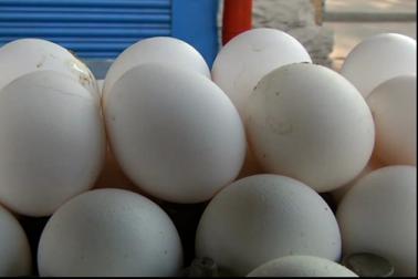 ـ تشخیص کے بعد معلوم ہوا کہ نقلی انڈوں میں سوڈیم الجینٹ موجود ہے ، جو انسانی صحت کے لیے نقصاندہ ہے ـ ۔
