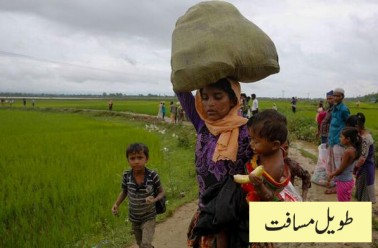 میانمار میں راکھین صوبے سے ہزارہا روہنگیا مہاجرین ایک طویل مسافت طے کر کے بنگلہ دیش پہنچ چکے ہیں۔ چھوٹے بچوں کو گود میں لاد کر دلدلی راستوں پر پیدل سفر آسان نہیں۔ یہ تصویر بنگلہ دیش میں ٹیکناف کے لمبر بل علاقے کی ہے۔