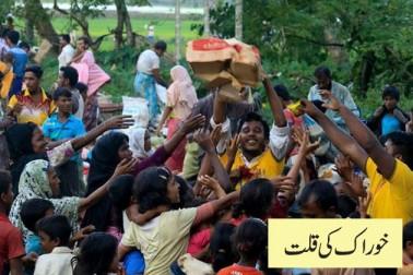 عالمی ادارہ مہاجرت کے مطابق بنگلہ دیش میں روہنگیا مہاجرین کی صورتحال انتہائی ابتر ہے۔ انہیں بنیادی ضروریات زندگی کی اشیا بھی دستیاب نہیں اور خوراک کی قلت کا بھی سامنا ہے۔(نوٹ تصاویر اور رپورٹ ڈی ڈبلیو ڈاٹ کام سے لی گئی ہیں)۔
