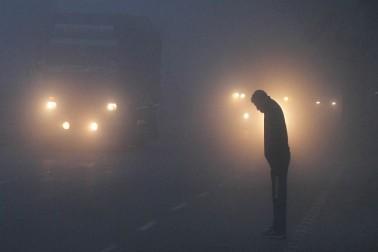 تاہم، مرکزی آلودگی کنٹرول بورڈ (سی پی سی بی) کا کہنا ہے کہ اس کا بنیادی سبب پنجاب اور ہریانہ سے آنے والی ہوائیں ہیں جس کی وجہ سے شہر کی آب و ہوا خراب ہو رہی ہے۔