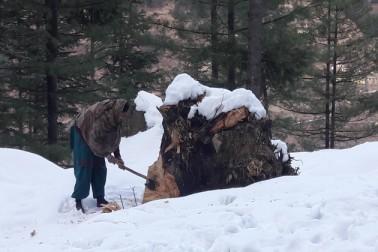 انہوں نے بتایا کہ گذشتہ ہفتے ہونے والی بھاری برف باری کے بعد گلمرگ میں سیاحوں کی آمد کا سلسلہ زور پکڑنے لگا ہے۔ شمالی کشمیر کے دیگر بالائی علاقوں بشمول ایل او سی کے نزدیک واقع علاقوں میں بھی تازہ برف باری ہوئی ہے۔