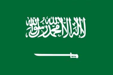 سعودی عرب میں غیر ملکی اداروں سے رابطہ ہونے کے معاملہ میں7 گرفتار