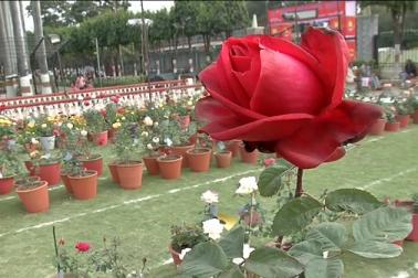 تصاویر :نوابوں کی نگری بھوپال میں دور روزہ گلاب نمائش ، دیکھنے کیلئے امڈ پڑا ہجوم