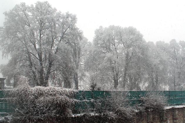 ریاست میں برف باری اور بارشوں کے ساتھ گذشتہ قریب ڈیڑھ ماہ سے جاری خشک موسم کا تسلسل ٹوٹ گیا اور اہلیان وادی بالخصوص زراعت، باغبانی اور سیاحت سے وابستہ لوگوں نے راحت کی سانس لی۔