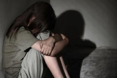 پورن دیکھنے کے بعد 9 سے 14 سال کے لڑکوں نے کی 8 سالہ بچی کی عصمت دری