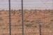 راجستھان سے متصل پاکستانی سرحد پرپھرکھلیں گی چوکیاں، وزارت داخلہ نے دی منظوری