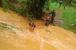 کیرالہ سیلاب: مرض پھیلنے کی تشویش کے بیچ قابو میں آئے حالات، مرکز نے کہا- سنگین قدرتی آفت