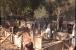 جموں وکشمیر میں ہندو۔ مسلم مل کر کر رہے ہیں مندر کی تعمیر