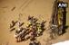 اوڈیشہ: بھینس کو بچانے کی کوشش میں مہاندی میں گرگئی بس، 12 کی موت، 49 زخمی