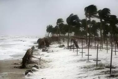 آندھرا پردیش کے ساحل سے ٹکرایا سمندری طوفان پیتھائی ، شدید بارش ، عام زندگی مفلوج