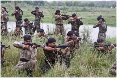 پلوامہ دہشت گردانہ حملہ: سی آر پی ایف کی یہ ٹکڑی دے سکتی ہے پاکستان کو جواب
